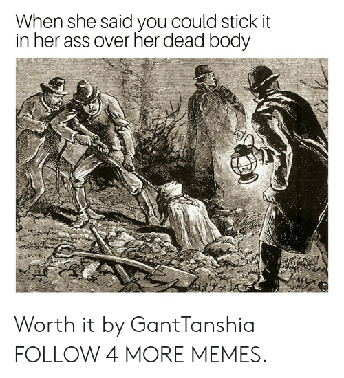 Stick It In: When she said you could stick it  in her ass over her dead body Worth it by GantTanshia FOLLOW 4 MORE MEMES.