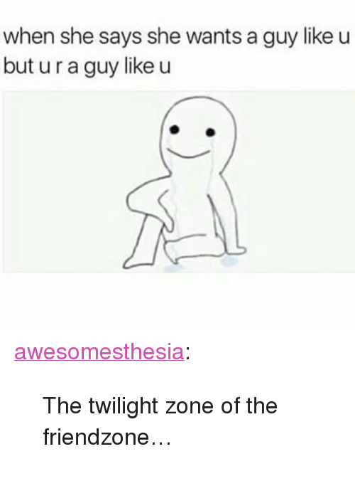"""Friendzone, Tumblr, and Blog: when she says she wants a guy like u  but u r a guy like u <p><a href=""""http://awesomesthesia.tumblr.com/post/173548118162/the-twilight-zone-of-the-friendzone"""" class=""""tumblr_blog"""">awesomesthesia</a>:</p>  <blockquote><p>The twilight zone of the friendzone…</p></blockquote>"""