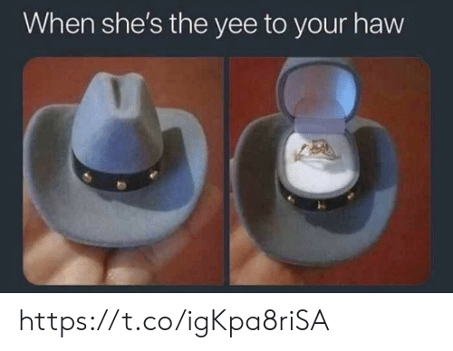 Memes, Yee, and 🤖: When she's the yee to your havw https://t.co/igKpa8riSA