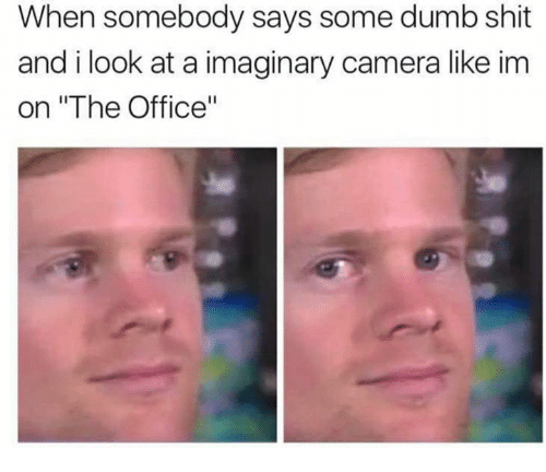 "Dumb, Shit, and The Office: When somebody says some dumb shit  and i look at a imaginary camera like im  on ""The Office"""