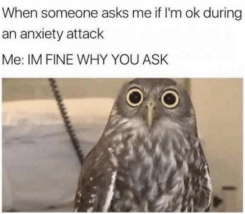 Im Ok: When someone asks me if I'm ok during  an anxiety attack  Me: IM FINE WHY YOU ASK