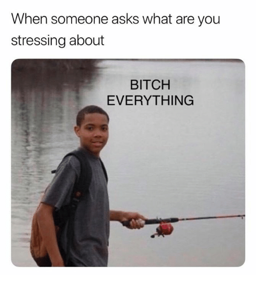 Bitch, Asks, and You: When someone asks what are you  stressing about  BITCH  EVERYTHING