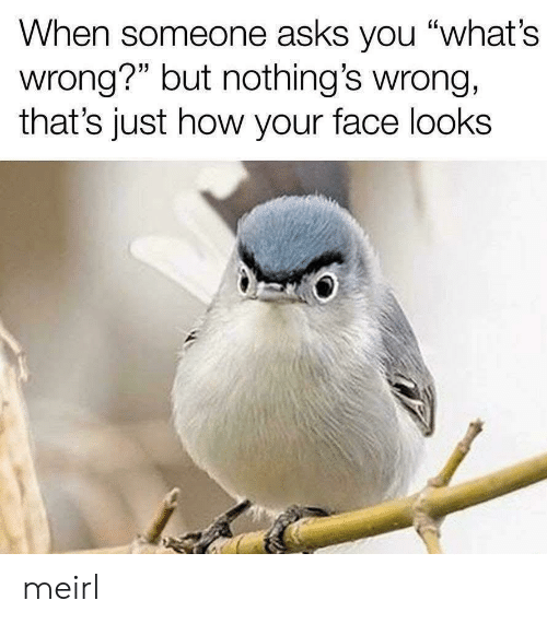 "Thats Just: When someone asks you ""what's  wrong?"" but nothing's wrong,  that's just how your face looks meirl"