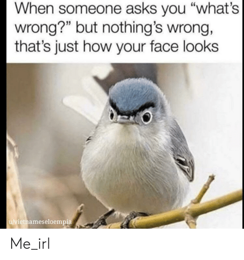 "Thats Just: When someone asks you ""what's  wrong?"" but nothing's wrong,  that's just how your face looks  u/vietnameseloempia Me_irl"