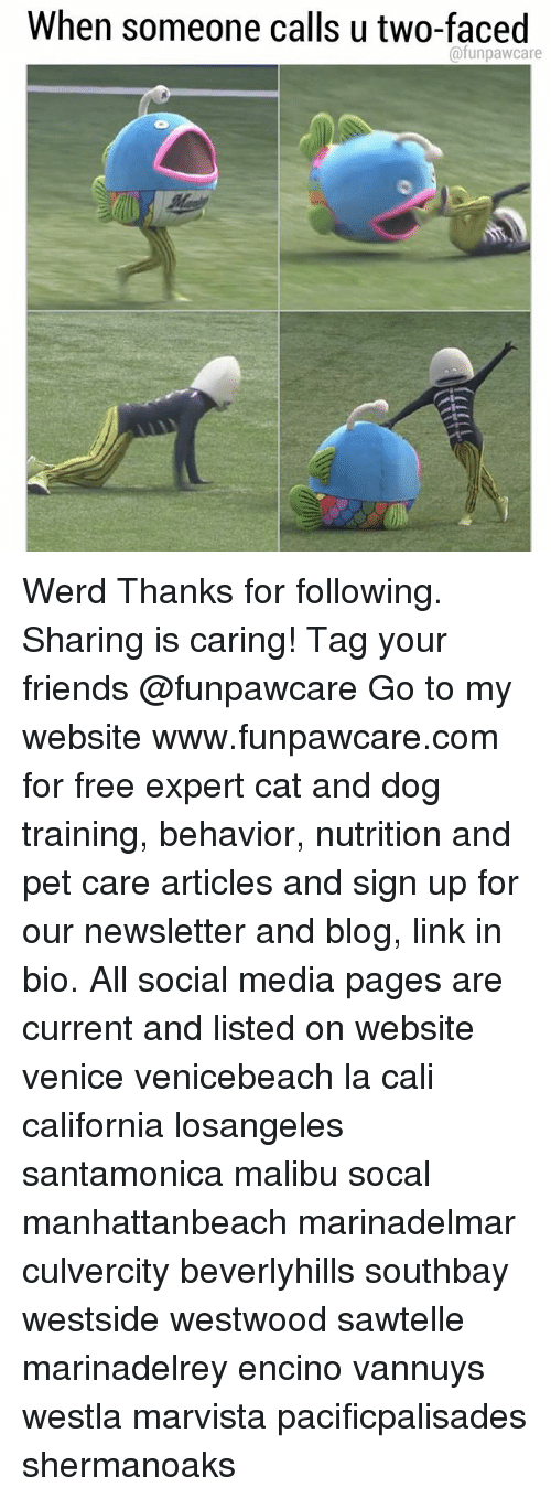Werd: When someone calls u two-faced  @funpawcare Werd Thanks for following. Sharing is caring! Tag your friends @funpawcare Go to my website www.funpawcare.com for free expert cat and dog training, behavior, nutrition and pet care articles and sign up for our newsletter and blog, link in bio. All social media pages are current and listed on website venice venicebeach la cali california losangeles santamonica malibu socal manhattanbeach marinadelmar culvercity beverlyhills southbay westside westwood sawtelle marinadelrey encino vannuys westla marvista pacificpalisades shermanoaks