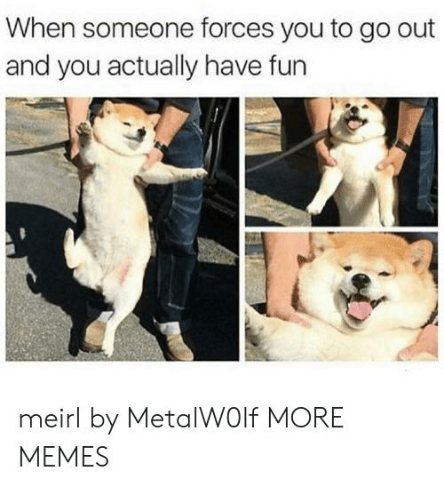 Dank, Memes, and Target: When someone forces you to go out  and you actually have fun meirl by MetalW0lf MORE MEMES