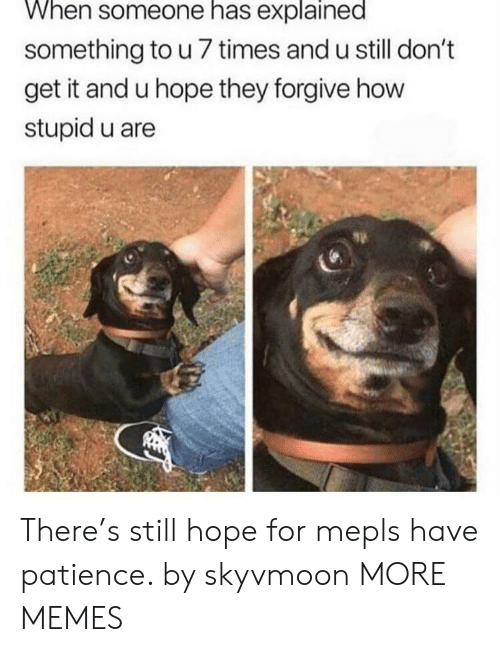 Hopingly: When someone has explained  something to u 7 times and u still don't  get it and u hope they forgive how  stupid u are There's still hope for mepls have patience. by skyvmoon MORE MEMES