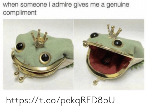 Memes, 🤖, and Compliment: when someone i admire gives me a genuine  compliment https://t.co/pekqRED8bU