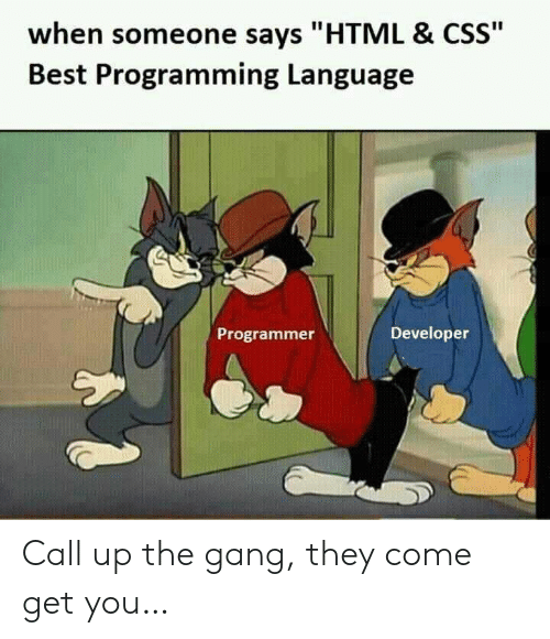 """programming language: when someone says """"HTML & CSS""""  Best Programming Language  Developer  Programmer Call up the gang, they come get you…"""