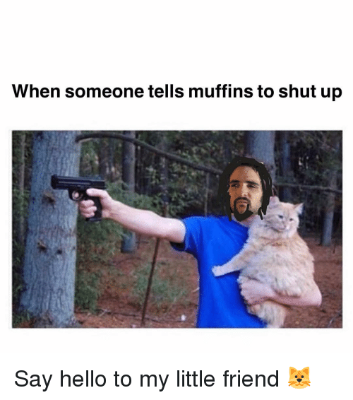 muffins: When someone tells muffins to shut up Say hello to my little friend 🐱