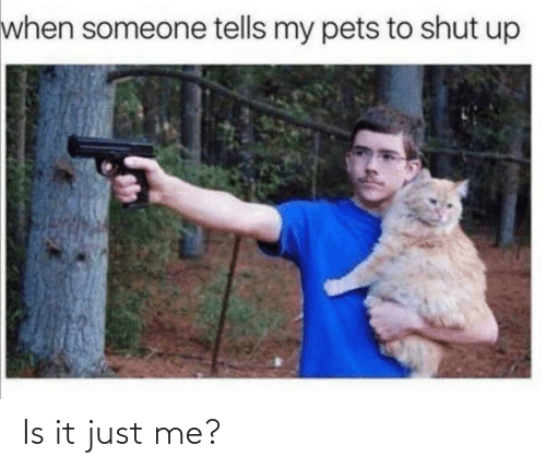 It Just: when someone tells my pets to shut up Is it just me?