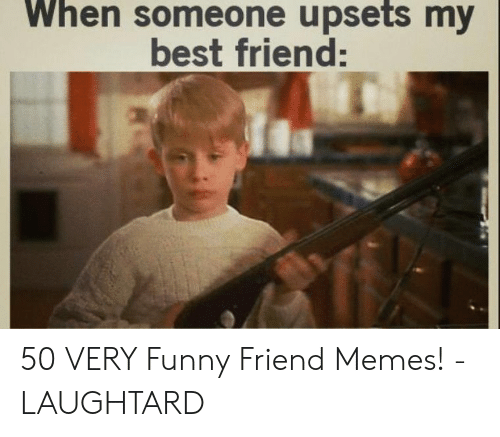 Best Friend, Funny, and Memes: When someone upsets my  best friend: 50 VERY Funny Friend Memes! - LAUGHTARD