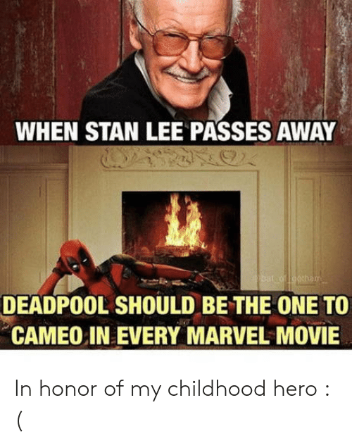 cameo: WHEN STAN LEE PASSES AWAY  DEADPOOL SHOULD BE THE ONE TO  CAMEO IN EVERY MARVEL MOVIE In honor of my childhood hero : (
