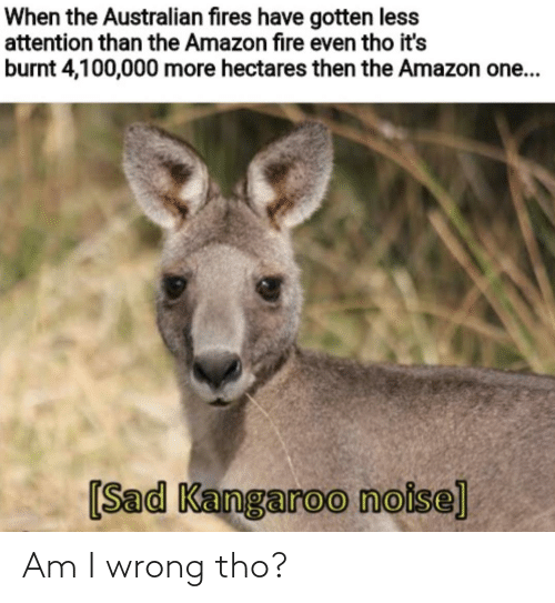 wrong: When the Australian fires have gotten less  attention than the Amazon fire even tho it's  burnt 4,100,000 more hectares then the Amazon one...  [Sad Kangaroo noise] Am I wrong tho?