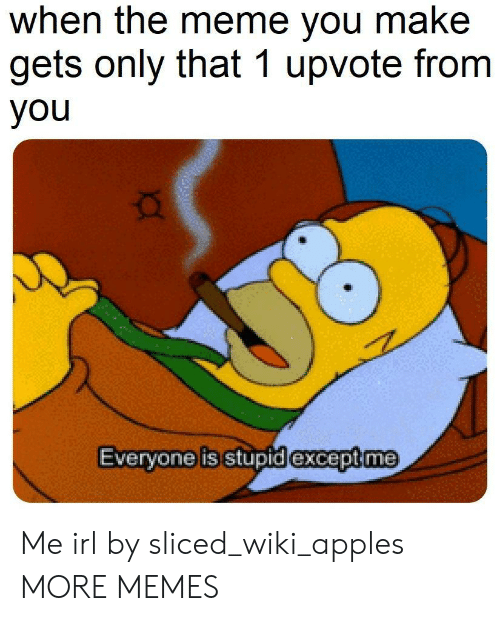 meme you: when the meme you make  gets only that 1 upvote from  you  Evervone is stupid lexcept me Me irl by sliced_wiki_apples MORE MEMES