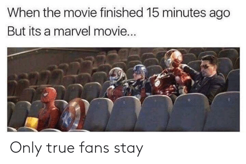 marvel movie: When the movie finished 15 minutes ago  But its a marvel movie... Only true fans stay