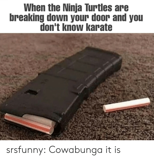 you don't know: When the Ninja Turtles are  breaking down your door and you  don't know karate srsfunny:  Cowabunga it is