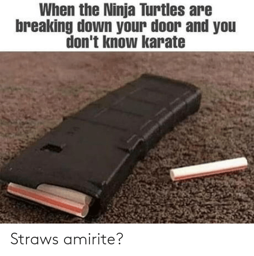 you don't know: When the Ninja Turtles are  breaking down your door and you  don't know karate Straws amirite?