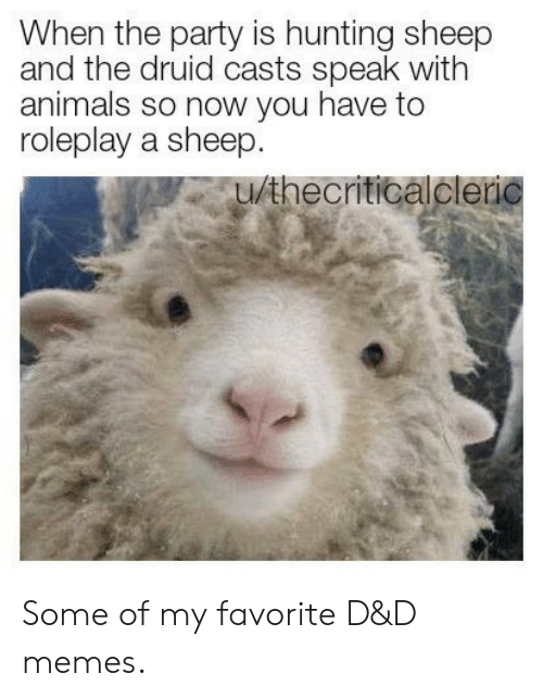 d&amp d: When the party is hunting sheep  and the druid casts speak with  animals so now you have to  roleplay a sheep.  u/thecriticalcleric Some of my favorite D&D memes.