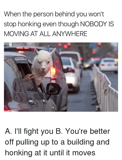 Ill Fight You: When the person behind you won't  stop honking even though NOBODY IS  MOVING AT ALL ANYWHERE A. I'll fight you B. You're better off pulling up to a building and honking at it until it moves
