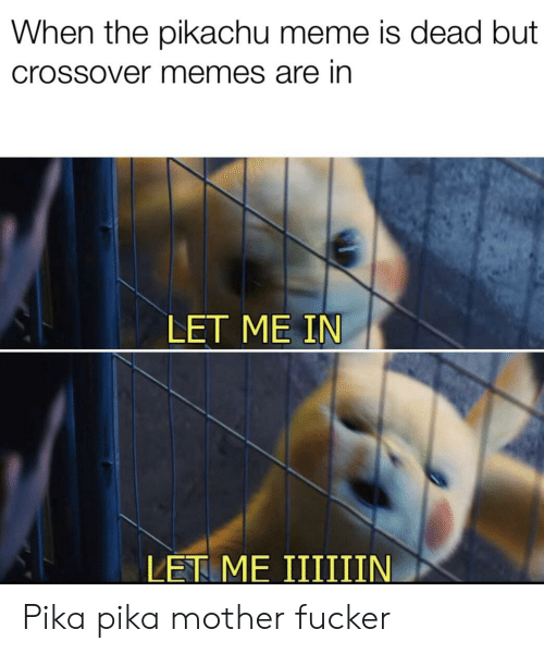 Pikachu Meme: When the pikachu meme is dead but  Crossover memes are in  LET ME IN Pika pika mother fucker
