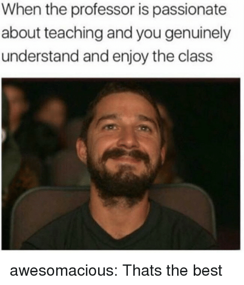 Tumblr, Best, and Blog: When the professor is passionate  about teaching and you genuinely  understand and enjoy the class awesomacious:  Thats the best