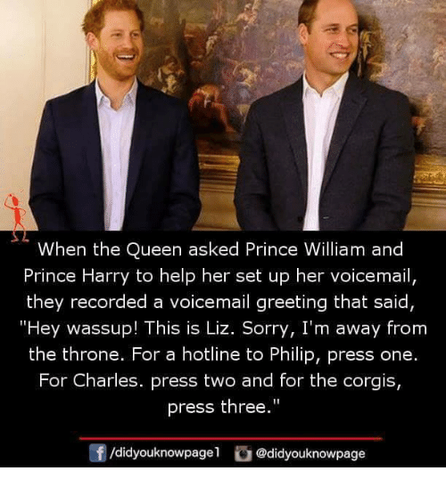 "Corgis: When the Queen asked Prince William and  Prince Harry to help her set up her voicemail,  they recorded a voicemail greeting that said  ""Hey wassup! This is Liz. Sorry, I'm away from  the throne. For a hotline to Philip, press one.  For Charles. press two and for the corgis,  press the""  0  /didyouknowpagel @didyouknowpage"