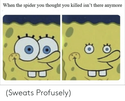 You Thought: When the spider you thought you killed isn't there anymore (Sweats Profusely)