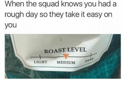When The Squad: When the squad knows you had a  rough day so they take it easy on  you  ROAST LEVEL  LIGHT  MEDIUM  DARK