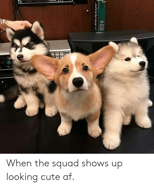 When The Squad: When the squad shows up looking cute af.