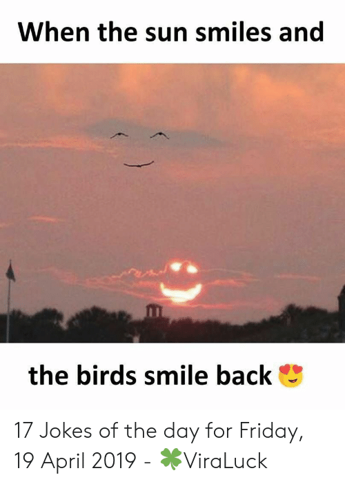 Friday, Birds, and Jokes: When the sun smiles and  the birds smile back 17 Jokes of the day for Friday, 19 April 2019 - 🍀ViraLuck