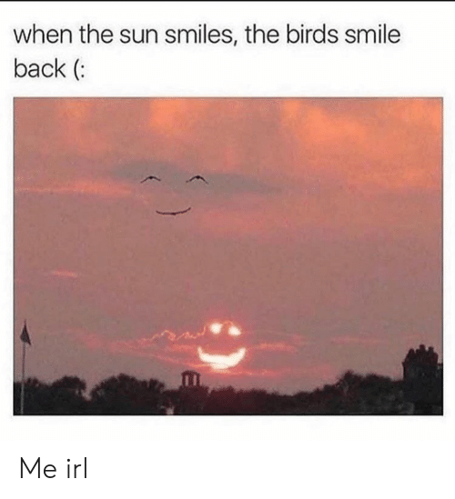 Birds, Smile, and Smiles: when the sun smiles, the birds smile  back ( Me irl