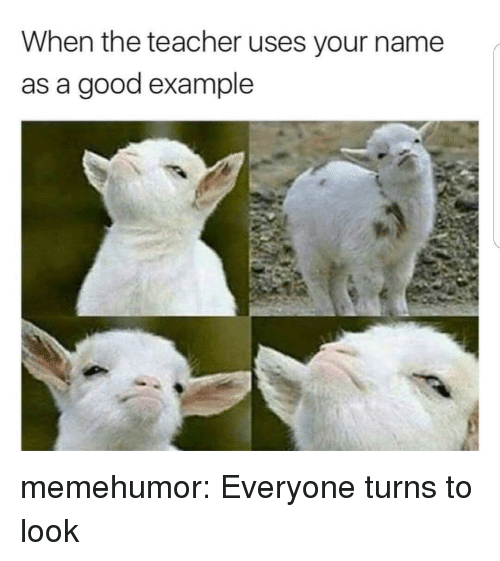Teacher, Tumblr, and Blog: When the teacher uses your name  as a good example memehumor:  Everyone turns to look