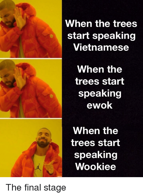 When the Trees Start Speaking Vietnamese When the Trees