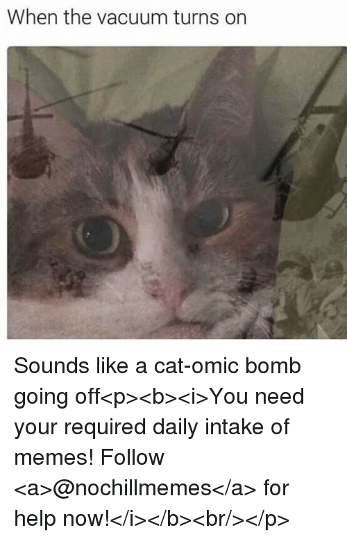 Memes, Help, and Vacuum: When the vacuum turns on Sounds like a cat-omic bomb going off<p><b><i>You need your required daily intake of memes! Follow <a>@nochillmemes</a>​ for help now!</i></b><br/></p>