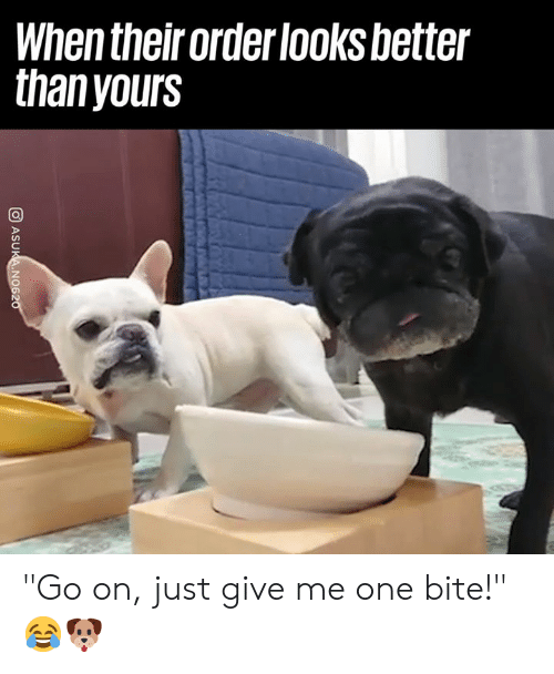 """Just Give Me: When their order looksbetter  thanyours """"Go on, just give me one bite!"""" 😂🐶"""