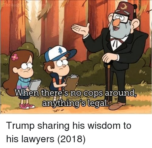 Trump, Lawyers, and Wisdom: When there's no cops around.  an Trump sharing his wisdom to his lawyers (2018)