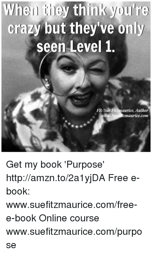 Memes, 🤖, and Rice: When they think youre  crazy but they ve only  seen Level 1.  FBlSue rice, Author  maurice com Get my book 'Purpose' http://amzn.to/2a1yjDA Free e-book: www.suefitzmaurice.com/free-e-book Online course www.suefitzmaurice.com/purpose