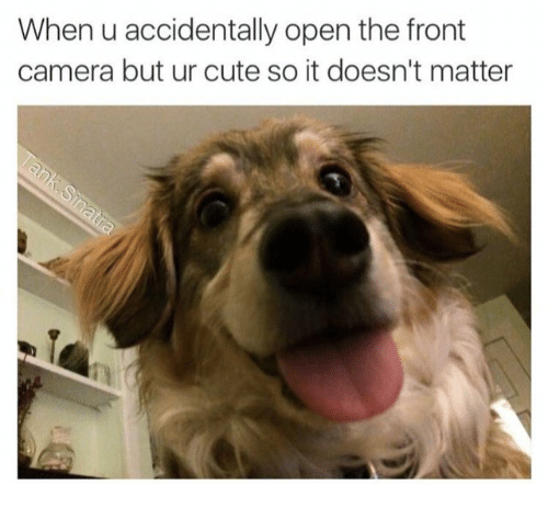 Cute, Camera, and Open: When u accidentally open the front  camera but ur cute so it doesn't matter