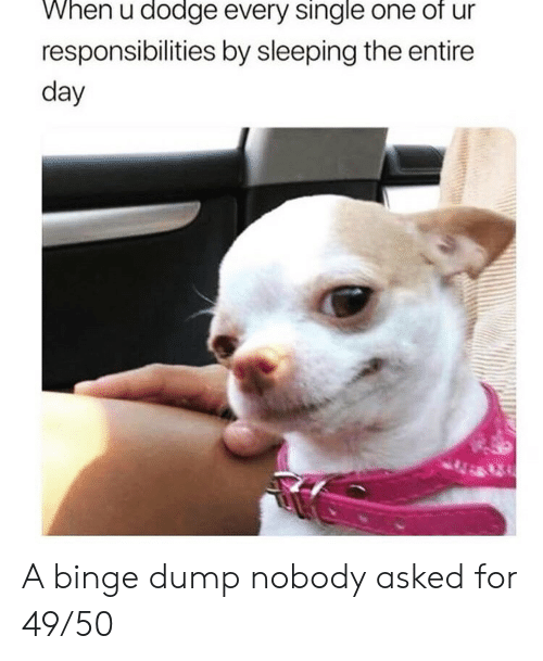 Dodge: When u dodge every single one of ur  responsibilities by sleeping the entire  day A binge dump nobody asked for 49/50