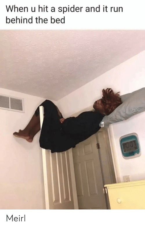 Run, Spider, and MeIRL: When u hit a spider and it run  behind the bed Meirl