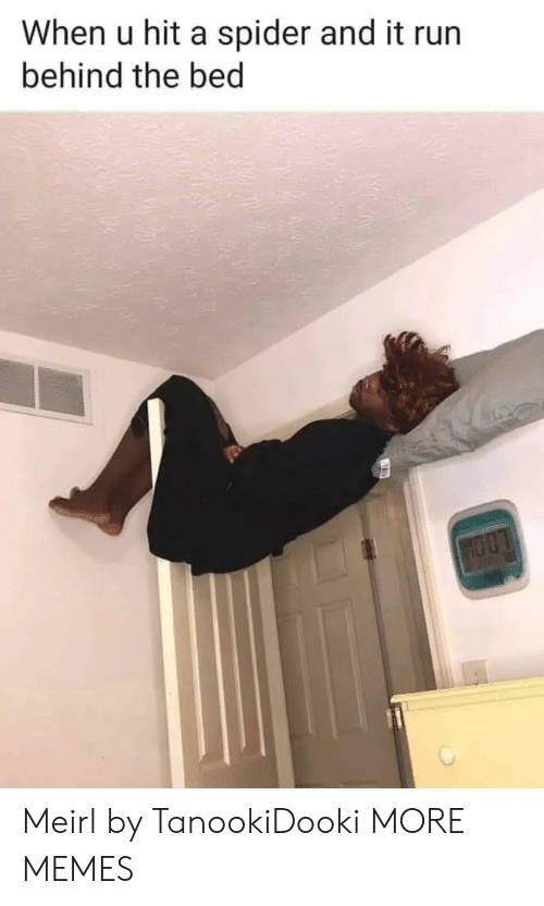 Dank, Memes, and Run: When u hit a spider and it run  behind the bed Meirl by TanookiDooki MORE MEMES