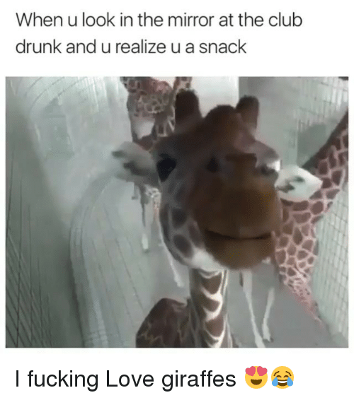 Drunked: When u look in the mirror at the club  drunk and u realize u a snack I fucking Love giraffes 😍😂