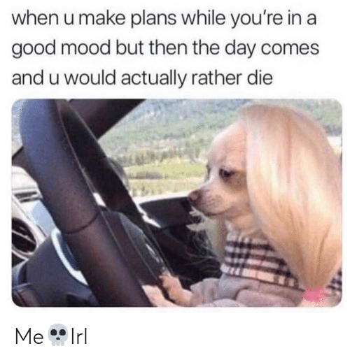 Mood, Good, and Day: when u make plans while you're in a  good mood but then the day comes  and u would actually rather die Me💀Irl