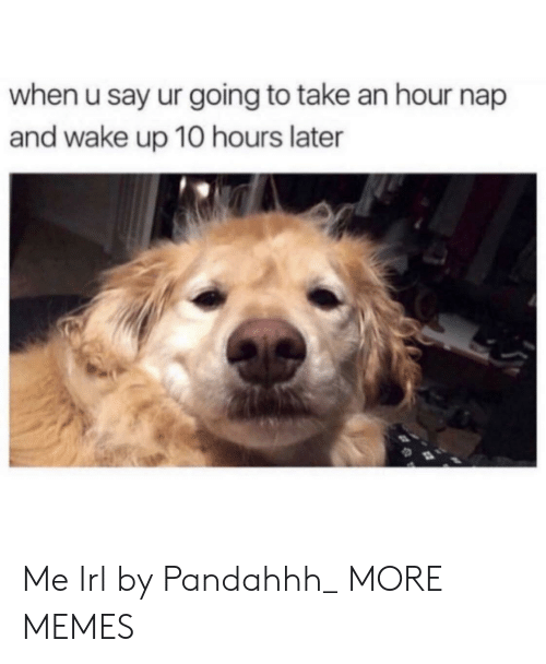 Dank, Memes, and Target: when u say ur going to take an hour nap  and wake up 10 hours later Me Irl by Pandahhh_ MORE MEMES