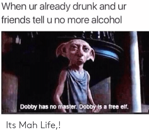 Alcoholes: When ur already drunk and ur  friends tell u no more alcohol  Dobby has no master Dobbyis a free elf. Its Mah Life,!