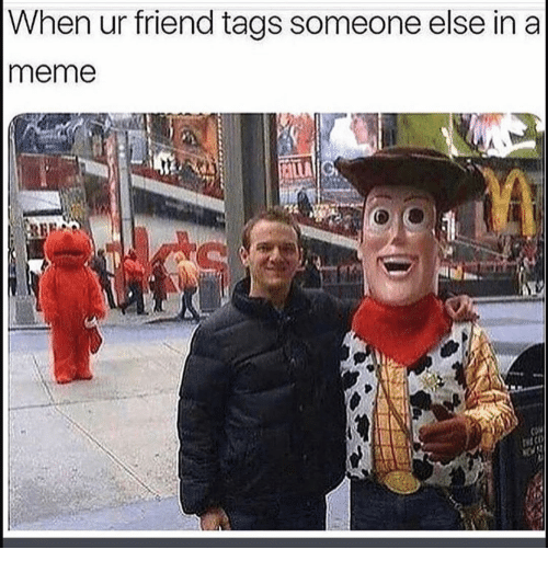 Funny, Meme, and Friend: When ur friend tags someone else in a  meme
