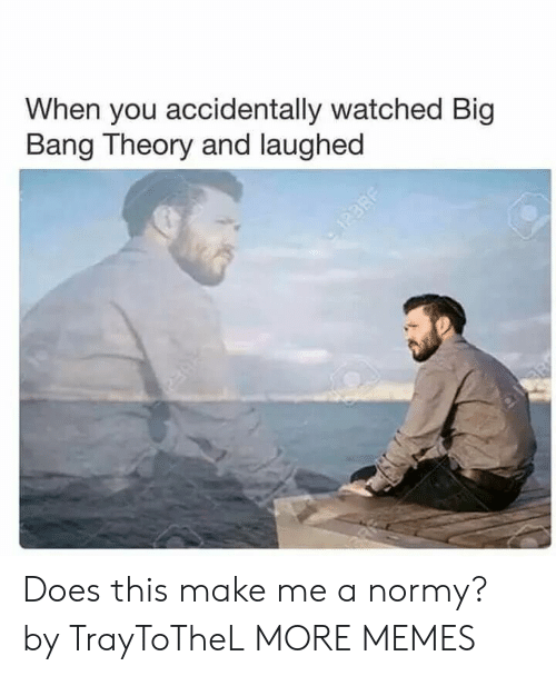Dank, Memes, and Target: When you accidentally watched Big  Bang Theory and laughed Does this make me a normy? by TrayToTheL MORE MEMES