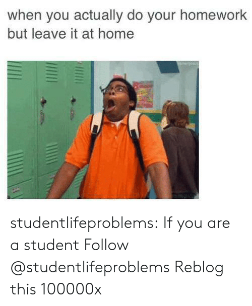 Do Your Homework: when you actually do your homework  but leave it at home studentlifeproblems:  If you are a student Follow @studentlifeproblems  Reblog this 100000x