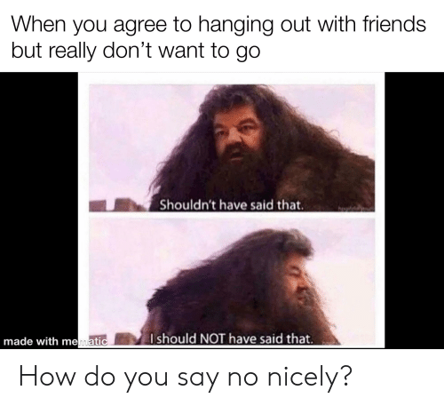 Friends, Reddit, and How: When you agree to hanging out with friends  but really don't want to go  Shouldn't have said that.  Ishould NOT have said that.  made with mematic How do you say no nicely?